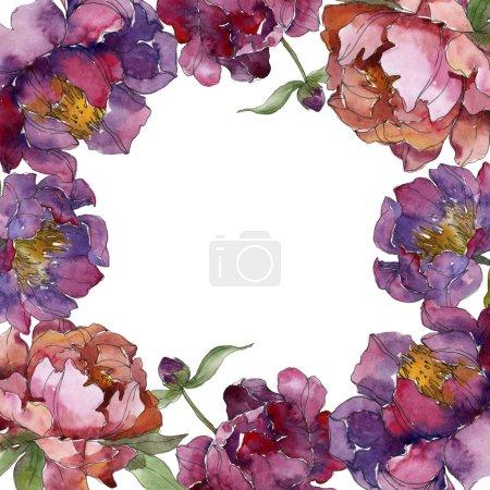 Foto de Púrpura peonías blanco aislado en fondo acuarela ilustración conjunto. Ornamento del marco de la frontera. - Imagen libre de derechos