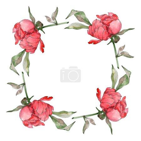 Foto de Peonías rojas conjunto de ilustración acuarela fondo aislado en blanco. Ornamento del marco de la frontera. - Imagen libre de derechos