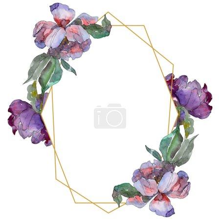 Foto de Peonías púrpura. Conjunto de ilustración de fondo de acuarela. Ornamento de la frontera del marco con espacio de copia. - Imagen libre de derechos