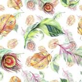 """Постер, картина, фотообои """"Красочные птицы перья крыла. Акварель фон иллюстрации набора. Акварель рисования моды акварель изолированы. Бесшовный фон узор. Обои для рабочего стола ткань печати текстуры"""""""