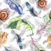 """Постер, картина, фотообои """"Красочные птицы перья крыла. Акварель фон иллюстрации набора. Акварель рисования моды акварель изолированы. Бесшовный фон узор. Обои для рабочего стола ткань печати текстуры."""""""