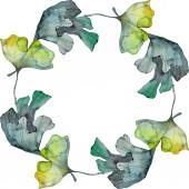 """Постер, картина, фотообои """"Листьев гинкго билоба. Листья растений Ботанический сад цветочный листва. Акварель фон иллюстрации набора. Акварель рисования моды акварель изолированы. Площадь орнамент границы кадра"""""""