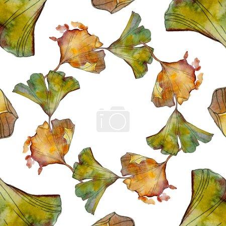 Photo for Ginkgo biloba leaf. Leaf plant botanical garden floral foliage. Watercolor background illustration set. Watercolour drawing fashion aquarelle isolated. Frame border ornament square. - Royalty Free Image