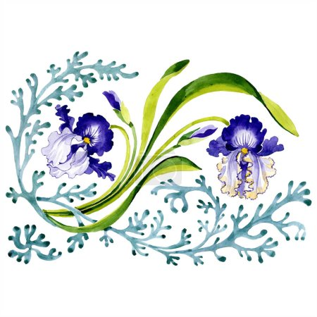 Photo for Blue iris floral botanical flower. Wild spring leaf wildflower isolated. Watercolor background illustration set. Watercolour drawing fashion aquarelle isolated. Isolated ornament illustration element. - Royalty Free Image