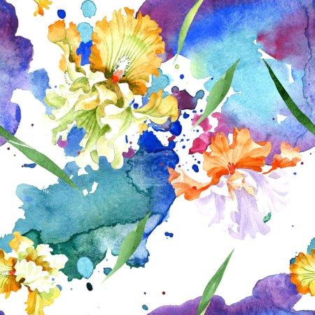 Photo pour Fleur botanique floral iris blanc orange. Feuille de printemps sauvage isolé. Illustration aquarelle ensemble. Dessin aquarelle de mode aquarelle. Motif de fond transparente. Impression texture de tissu papier peint - image libre de droit