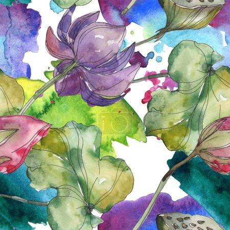 Photo pour Fleur botanique de lotus rose et violet. Feuille de printemps sauvage isolée. Ensemble d'illustration aquarelle. Aquarelle dessin mode aquarelle. Modèle de fond sans couture. Texture d'impression papier peint tissu . - image libre de droit
