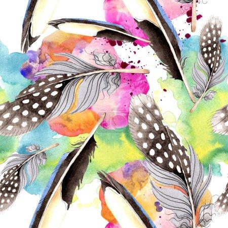 Photo pour Des plumes d'oiseaux d'aile. Ensemble d'illustration de fond aquarelle. Modèle de fond sans couture. Texture d'impression papier peint tissu . - image libre de droit