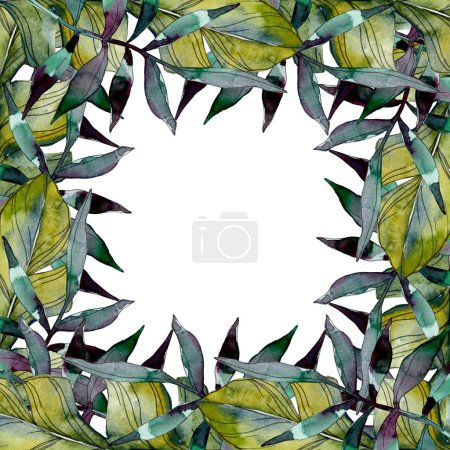 Green leaf plant botanical garden foliage. Exotic tropical hawaiian summer. Watercolor background illustration set. Watercolour drawing fashion aquarelle isolated. Frame border ornament square.