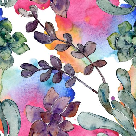 Foto de Las suculentas botánicas Hawaiianas tropicales. Conjunto de ilustración acuarela. Patrón de fondo transparente. Textura impresión de papel pintado de tela. - Imagen libre de derechos