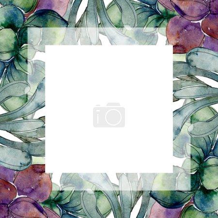 Photo pour Succulents botaniques exotiques hawaïens tropicaux. Ensemble d'illustration de fond aquarelle. Cadre bordure ornement avec espace de copie . - image libre de droit