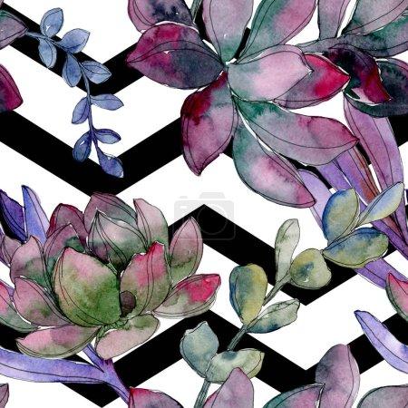 Photo pour Fleur botanique florale succulente. Feuille de printemps sauvage isolée. Ensemble d'illustration aquarelle. Aquarelle dessin mode aquarelle. Modèle de fond sans couture. Texture d'impression papier peint tissu . - image libre de droit