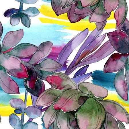 Sukkulente florale botanische Blume. wildes Frühlingsblatt isoliert. Aquarell-Illustrationsset vorhanden. Aquarell zeichnen Mode-Aquarell. nahtlose Hintergrundmuster. Stoff Tapete drucken Textur.