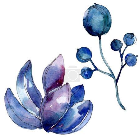 Photo for Succulent botanical plants. Watercolor background illustration set. Isolated succulents illustration elements. - Royalty Free Image