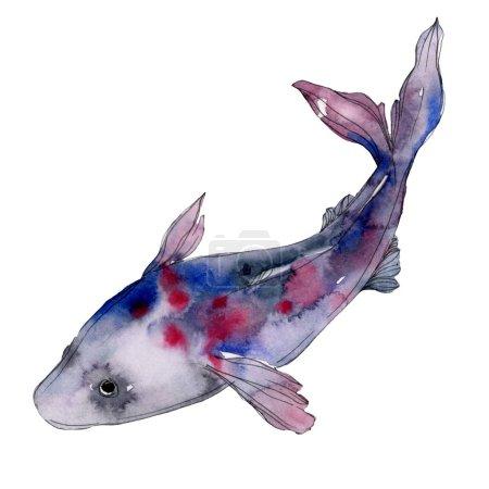 Photo pour Ensemble de poissons aquatiques sous-marins tropicaux colorés tachetés. Mer Rouge et poissons exotiques à l'intérieur. Ensemble de fond aquarelle. Aquarelle dessin mode aquarelle. Élément d'illustration de poisson isolé . - image libre de droit