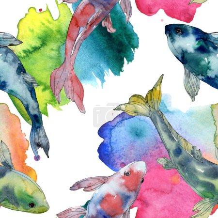Photo pour Ensemble de tacheté aquatiques poissons multicolores sous-marines. Mer rouge et des poissons exotiques à l'intérieur. Illustration aquarelle ensemble. Dessin aquarelle de mode aquarelle. Motif de fond transparente. Fond d'écran de tissu imprimé. - image libre de droit
