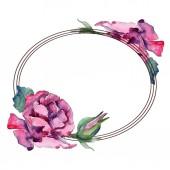 """Постер, картина, фотообои """"Фиолетовый цветок розы Цветочные ботанический. Дикие весны листьев Уайлдфлауэр изолированы. Акварель фон иллюстрации набора. Рисования акварелью моды акварель. Площадь орнамент границы кадра."""""""