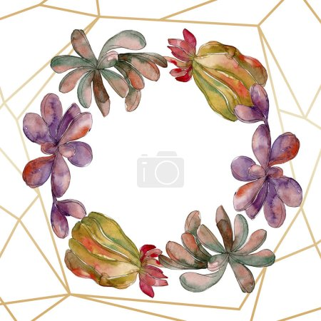 Photo pour Fleur botanique floral succulente jungle. Wildflower de feuille de printemps sauvage isolé. Aquarelle de fond illustration ensemble. Aquarelle de mode dessin aquarelle isolé. Place de cadre bordure ornement. - image libre de droit