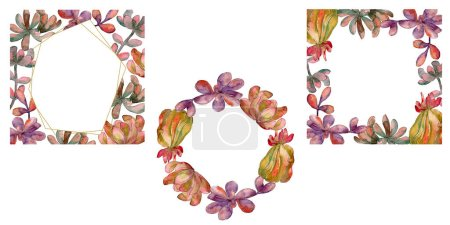 Photo for Jungle succulent floral botanical flower. Wild spring leaf wildflower isolated. Watercolor background illustration set. Watercolour drawing fashion aquarelle isolated. Frame border ornament square. - Royalty Free Image
