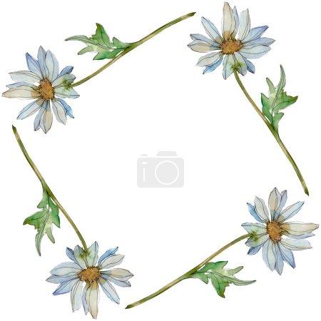 Photo pour Camomille avec feuilles vertes illustration aquarelle set, cadre bordure ornement avec espace copie - image libre de droit