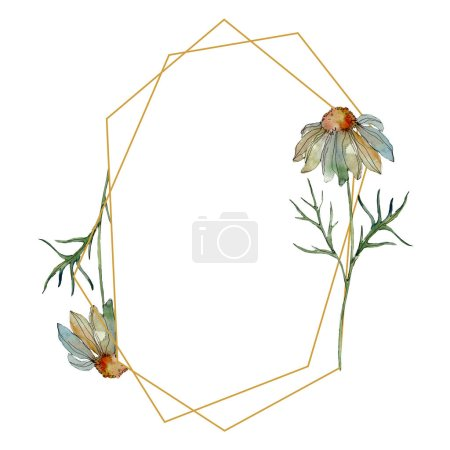 Photo for Chamomiles with green leaves watercolor illustration set, frame border ornament with copy space - Royalty Free Image