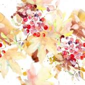 """Постер, картина, фотообои """"Букет из осенних ягод. Дикие весны листьев изолированы. Набор акварели иллюстрации. Акварель рисования моды акварель изолированы. Бесшовный фон узор. Обои для рабочего стола ткань печати текстуры."""""""