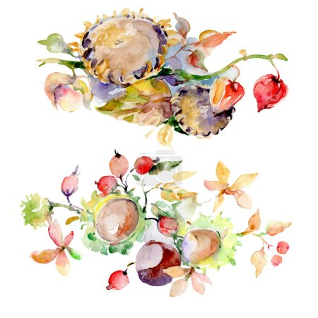 Photo for Bouquet of autumn forest fruits. Wild spring leaf isolated. Watercolor background illustration set. Watercolour drawing fashion aquarelle. Isolated bouquet illustration element. - Royalty Free Image