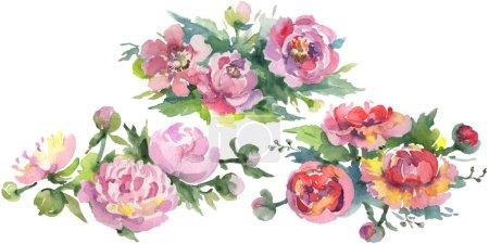 Photo pour Bouquets de pivoines aux feuilles vertes isolées sur blanc. Ensemble d'illustration de fond aquarelle . - image libre de droit