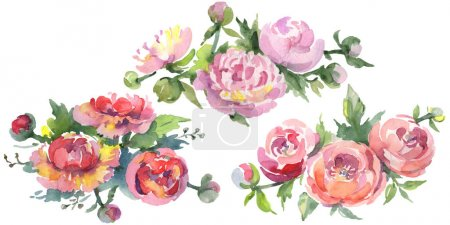 Photo for Bouquets of peonies with green leaves isolated on white. Watercolor background illustration set. - Royalty Free Image