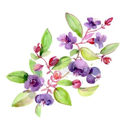 Photo pour Bouquet des fleurs pourpres avec des feuilles vertes d'isolement sur le blanc. Éléments d'illustration de fond d'aquarelle. - image libre de droit