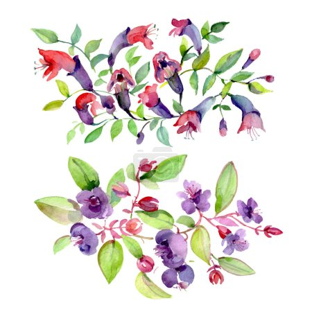 Photo for Bouquets of purple flowers with green leaves isolated on white. Watercolor background illustration elements. - Royalty Free Image