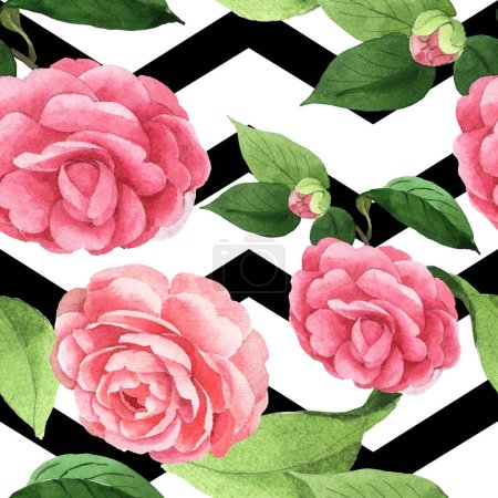 Photo pour Pink camellia flowers with green leaves on white background with black lines. Watercolor illustration set. Seamless background pattern. - image libre de droit
