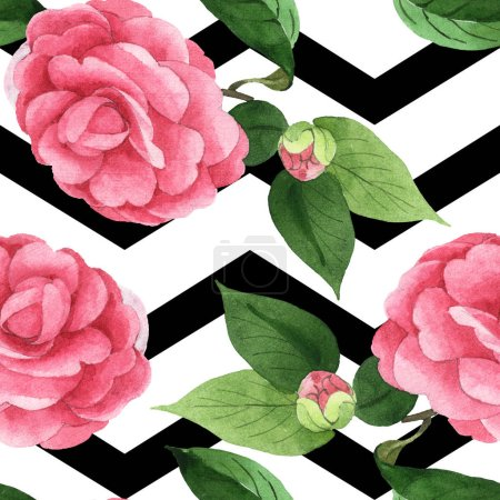 Photo pour Pink camellia flowers with green leaves on background black lines. Watercolor illustration set. Seamless background pattern. - image libre de droit