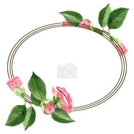 Photo for Pink camellia flowers with green leaves isolated on white. Watercolor background illustration set. Empty frame with copy space. - Royalty Free Image
