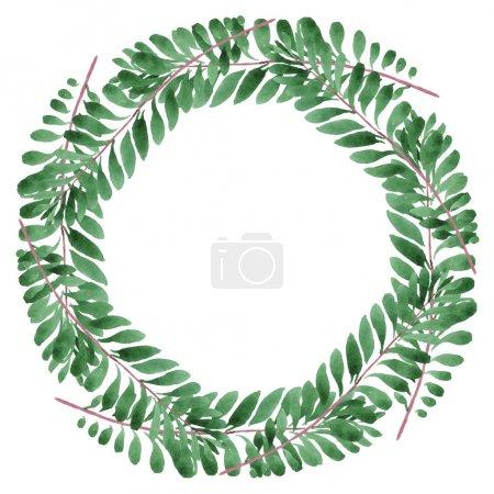 Photo pour Feuilles vertes hawaïennes exotiques de palmier d'hawaïol d'isolement sur le blanc. Ensemble de fond d'aquarelle. Cadre avec l'espace de copie. - image libre de droit