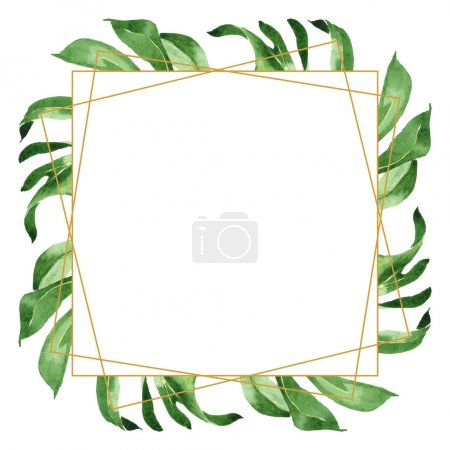 Foto de Exotic tropical hawaiian green palm leaves isolated on white. Watercolor background set. Frame with copy space. - Imagen libre de derechos