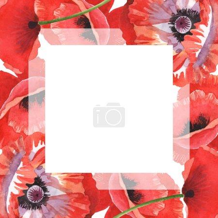 Photo pour Coquelicots rouges isolés sur le blanc. Ensemble d'illustration de fond d'aquarelle. Cadre avec des fleurs et l'espace de copie. - image libre de droit