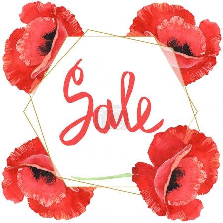 Photo pour Coquelicots rouges isolés sur le blanc. Ensemble d'illustration de fond d'aquarelle. Cadre avec des fleurs et lettrage de vente. - image libre de droit