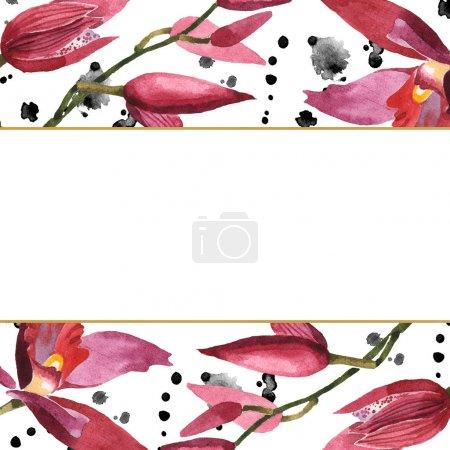 Photo pour Orchidées de Marsala avec des lames vertes d'isolement sur le blanc. Ensemble d'illustration de fond d'aquarelle. Ornement de bordure de cadre avec l'espace de copie. - image libre de droit