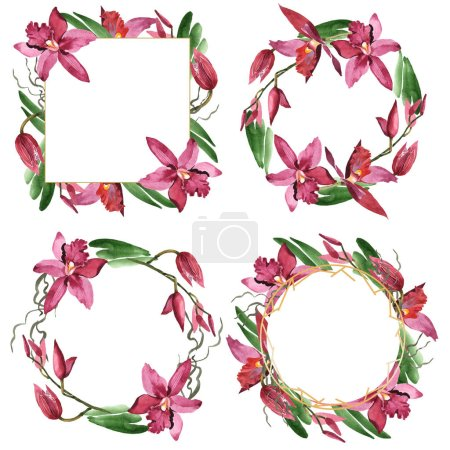 Marsala orchids with green leaves isolated on white. Watercolor background illustration set of frames with copy space.