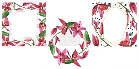 Photo for Marsala orchids with green leaves isolated on white. Watercolor background illustration set of frames with copy space. - Royalty Free Image