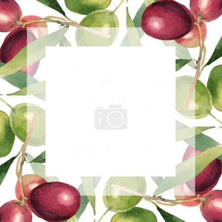 Foto de Fresh olives with green leaves isolated on white watercolor background illustration. Frame ornament with copy space. - Imagen libre de derechos