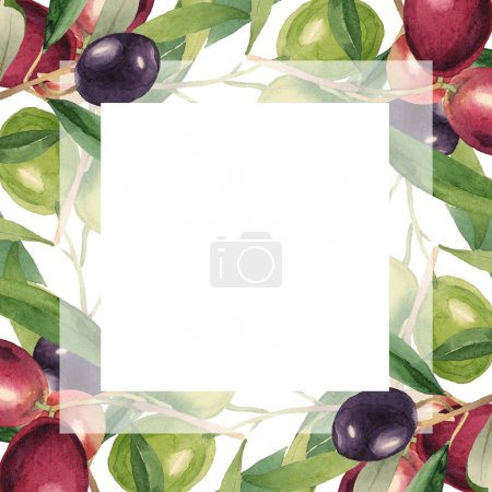 Photo for Fresh olives with green leaves isolated on white watercolor background illustration. Frame ornament with copy space. - Royalty Free Image