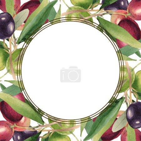 Photo pour Olives fraîches avec des lames vertes d'isolement sur l'illustration blanche de fond d'aquarelle. Ornement de cadre avec l'espace de copie. - image libre de droit