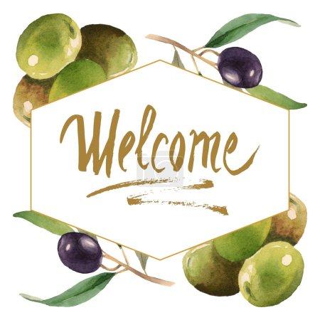 Photo pour Olives fraîches avec des lames vertes d'isolement sur l'illustration blanche de fond d'aquarelle. Ornement de cadre avec lettrage de bienvenue. - image libre de droit