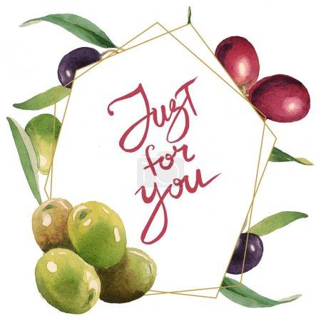 Photo pour Olives fraîches avec des lames vertes d'isolement sur l'illustration blanche de fond d'aquarelle. Ornement de cadre avec juste pour vous lettrage. - image libre de droit