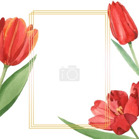 Foto de Red tulips with green leaves illustration isolated on white. Frame ornament with copy space. - Imagen libre de derechos
