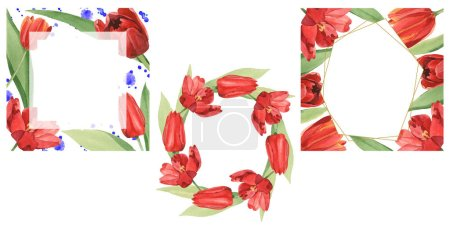 Wreaths of red tulips with green leaves illustration isolated on white. Frame ornaments with copy space.