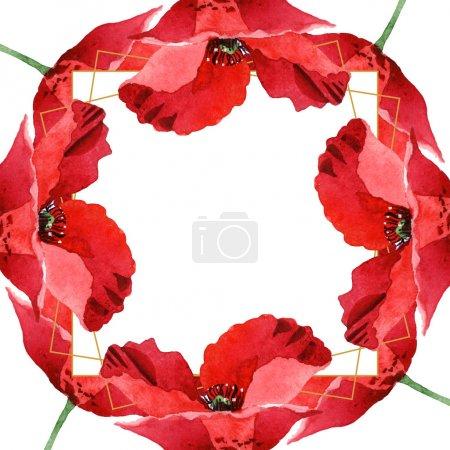 Photo pour Coquelicots rouges isolés sur le blanc. Ensemble d'illustration de fond d'aquarelle. Ornement de cadre avec l'espace de copie. - image libre de droit