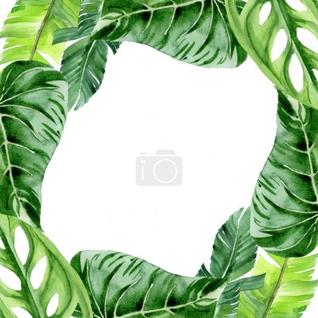 Photo for Exotic tropical hawaiian palm tree leaves isolated on white. Watercolor background illustration set. Frame ornament with copy space. - Royalty Free Image