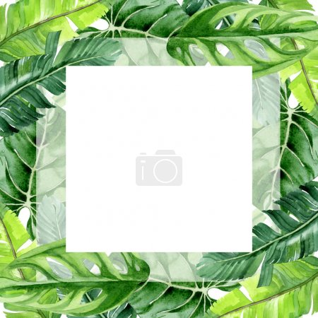 Exotic tropical hawaiian palm tree leaves isolated on white. Watercolor background illustration set. Frame ornament with copy space.